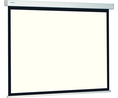 Buy ProScreen Projection Screen 200 x 153 cm
